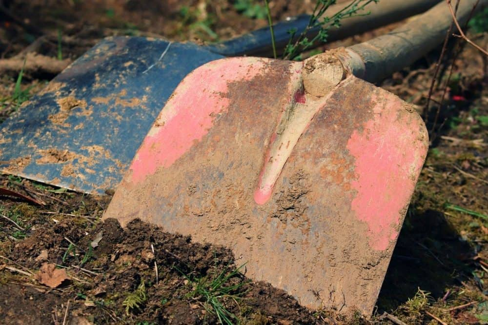 amending clay soil for grass seed