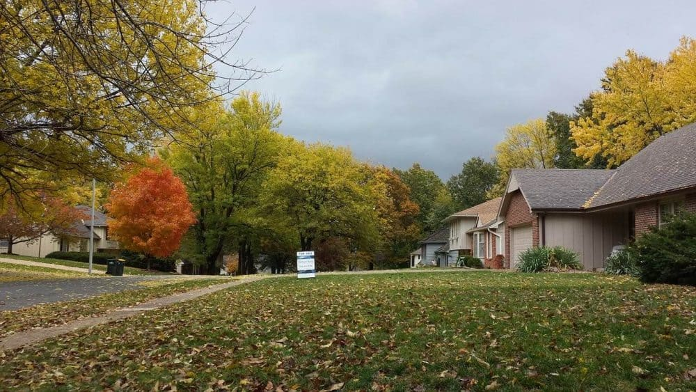 a row of grassy lawns in the fall