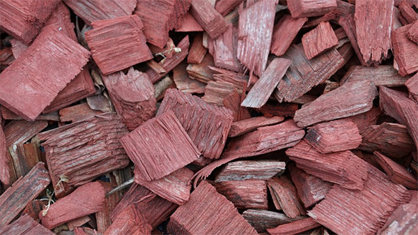 wood chips for an electric smoker