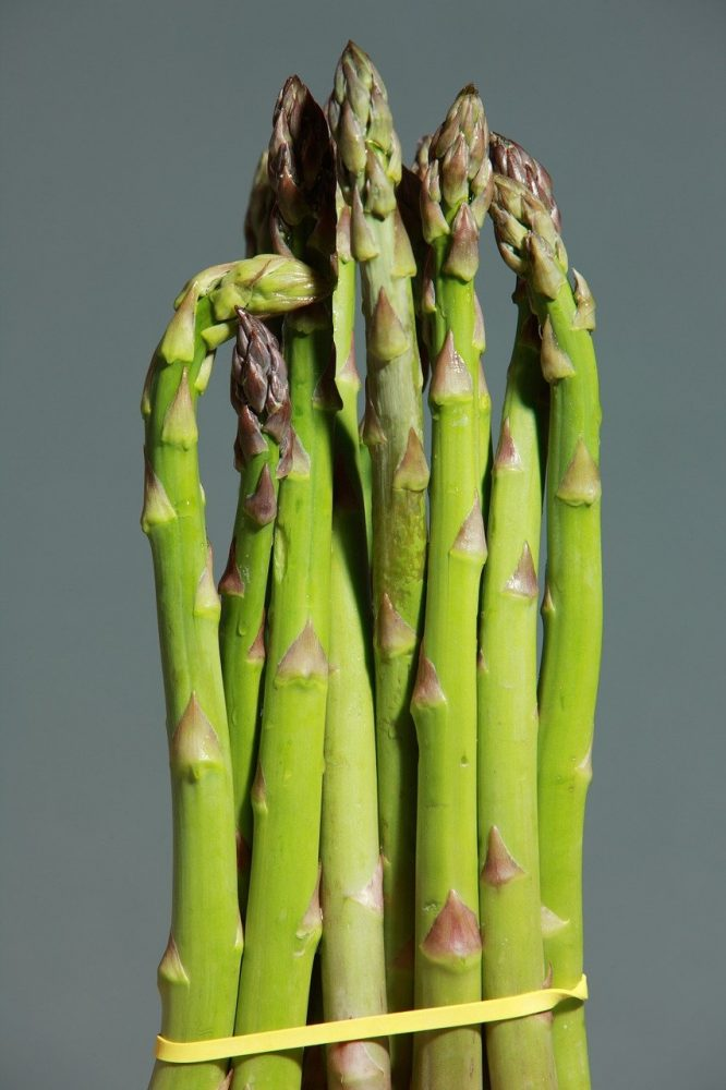 asparagus in the store