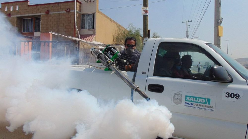 wasp killer spray coming out of a truck