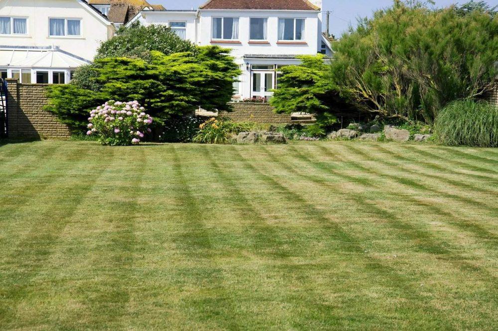 lawn mower stripe on a lawn