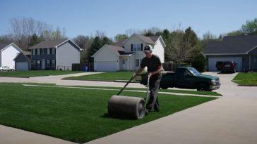 rolling a lawn
