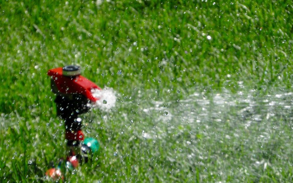 a sprinkler watering a green lawn in the summer heat